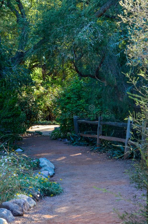 Chemin à travers les bois images libres de droits