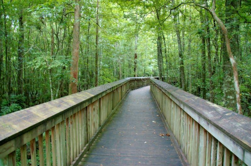 Chemin élevé au-dessus d'un marais au parc d'état de Tickfaw photos stock
