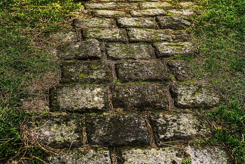 Chemin étendu avec des briques menant quelque part photos libres de droits