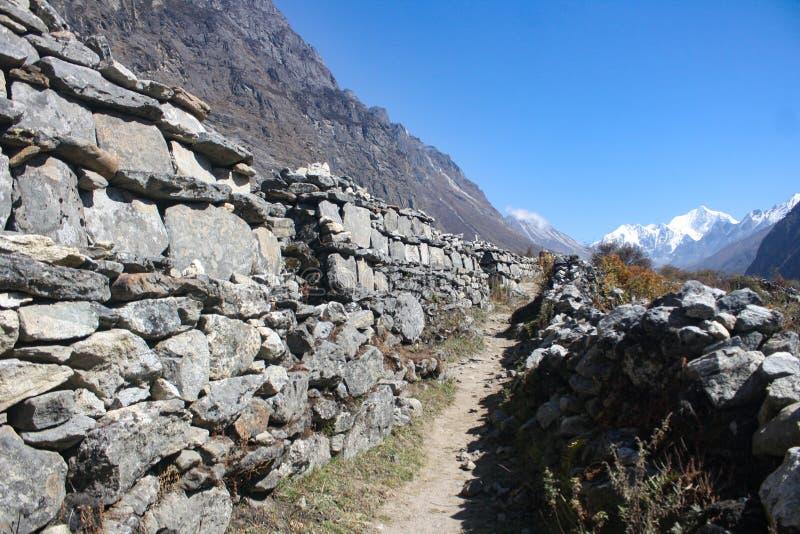 chemin aligné en pierre jusqu'au gompa kyanging illustration libre de droits