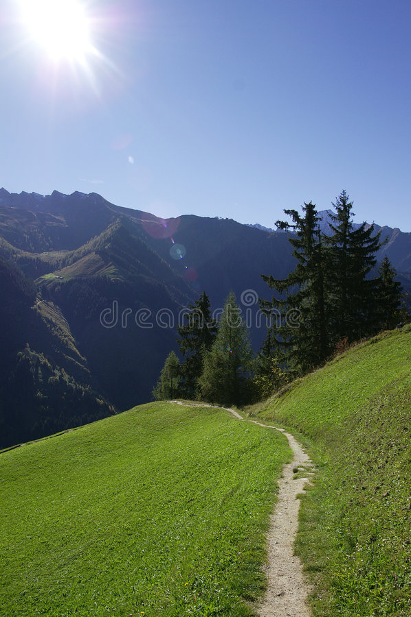 Chemin alpestre photo stock