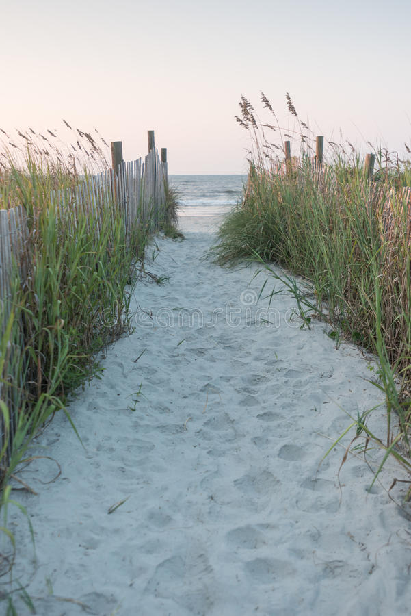 Chemin au-dessus des dunes photo stock