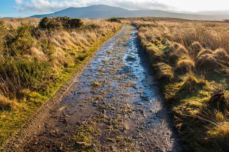Chemin boueux dans un amarrage en Ecosse rurale images libres de droits