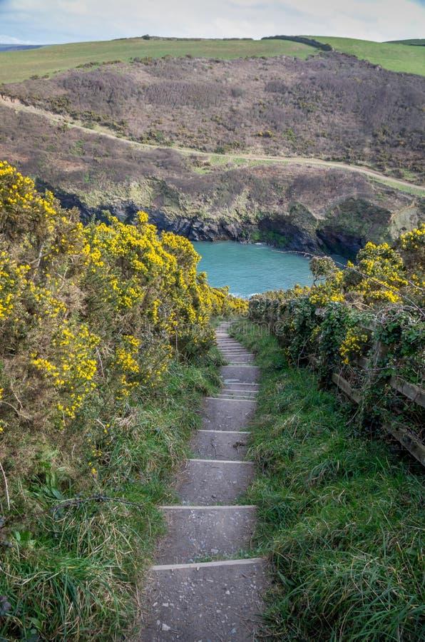 Chemin côtier autour de quin de port près de port Isaac les Cornouailles Angleterre R-U photo stock