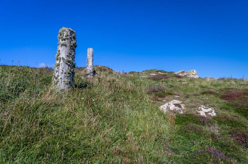 Chemin côtier dans les Cornouailles avec le vieux courrier de lichen image libre de droits