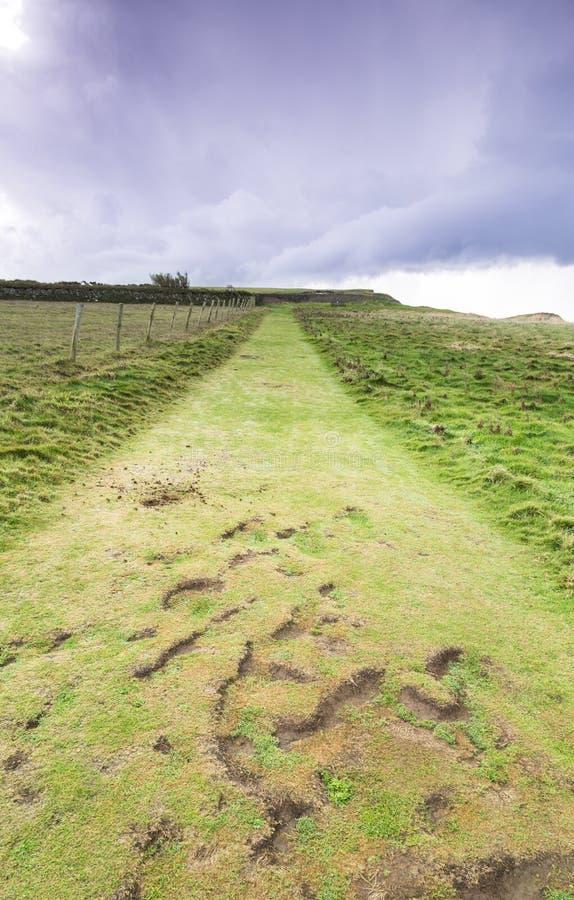 Chemin côtier les Cornouailles photos libres de droits