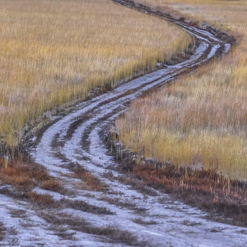 Chemin courbant par un champ d'herbe en vallée de l'Utah images stock