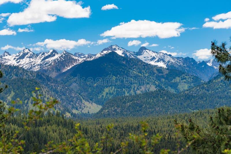 Chemin détourné scénique de pins de Ponderosa, Idaho photo libre de droits