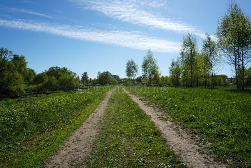 Chemin d'herbe avec le ciel de ressort avec des nuages images libres de droits