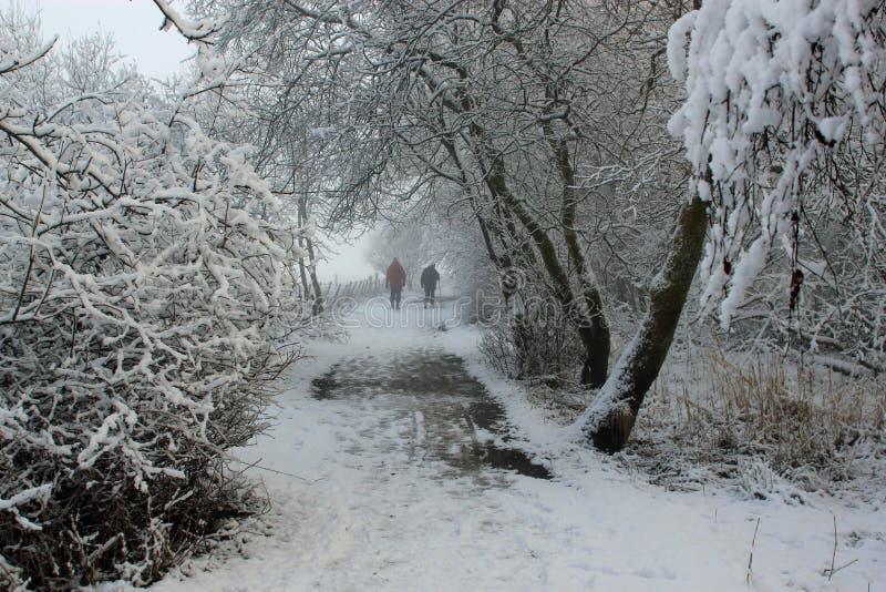 Chemin d'hiver avec des marcheurs images stock