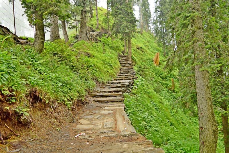 Chemin dans la montagne image stock