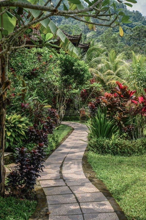 Chemin dans le jardin au jour d'été photographie stock libre de droits