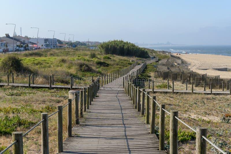 Chemin dans les dunes photo libre de droits