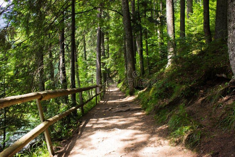 Chemin dans les montagnes image libre de droits