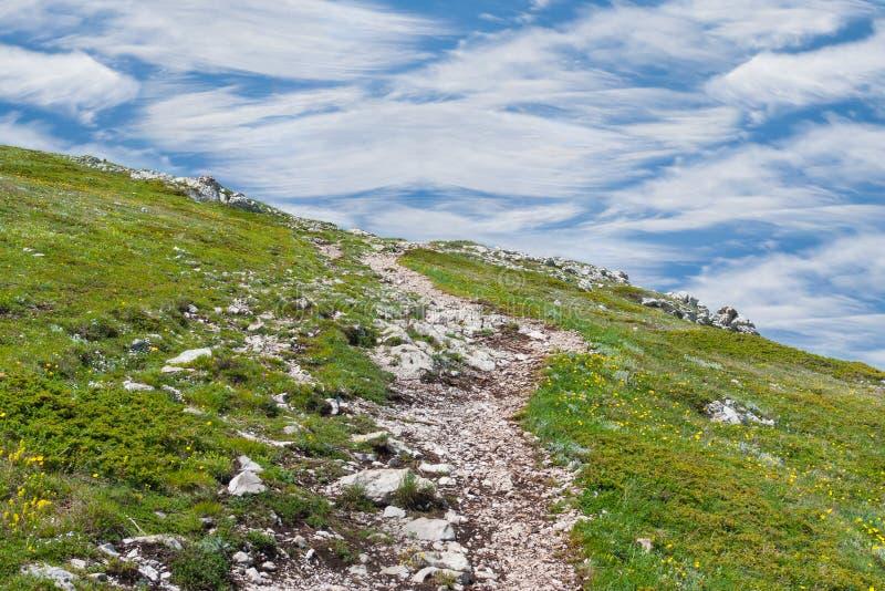 Chemin dans les montains photo libre de droits