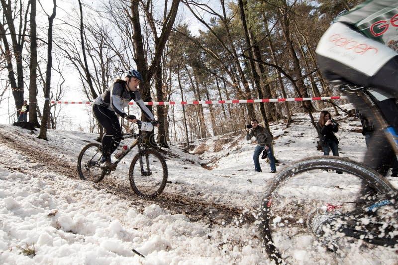 Chemin de bicyclette de l'hiver images libres de droits