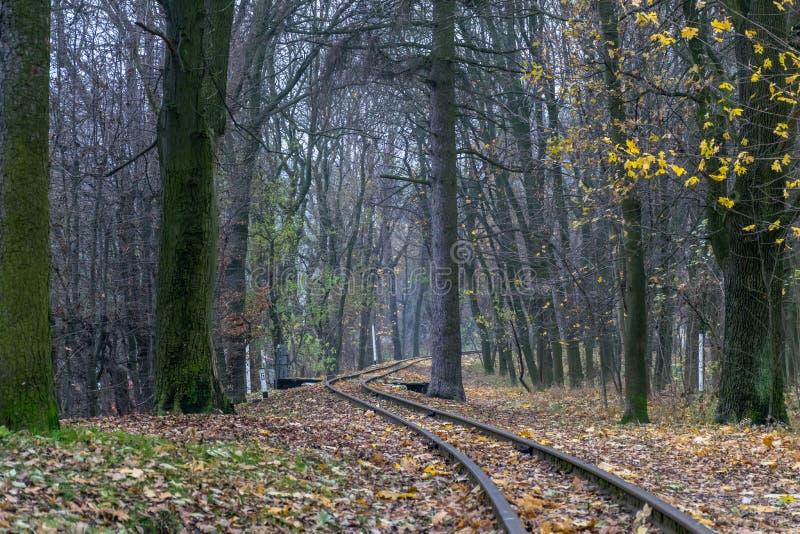 Chemin de fer à un rêve image libre de droits