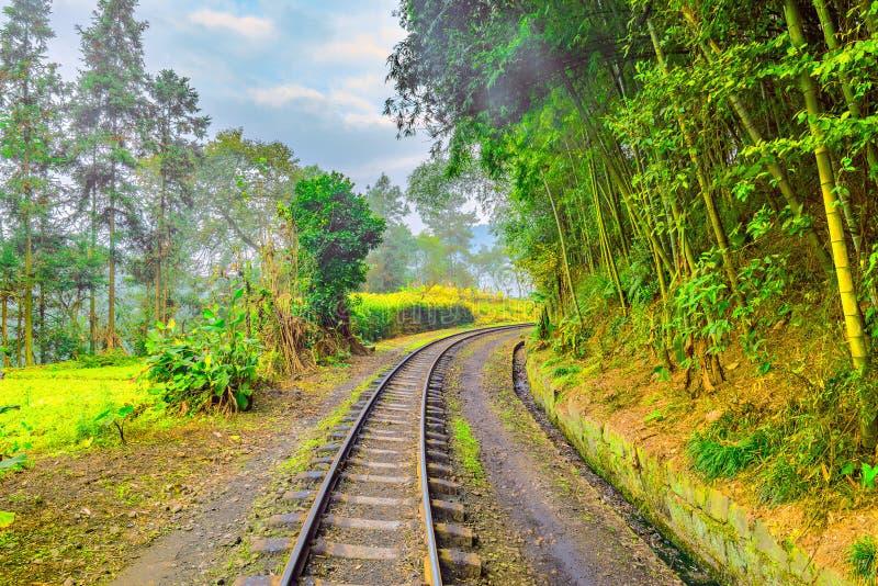 Chemin de fer à voie étroite de vapeur de Yuejin à Bagou images stock