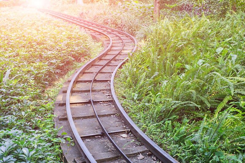 Chemin de fer en parc image stock