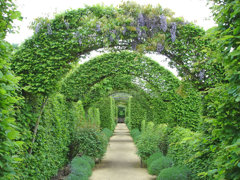 Chemin de jardin sous des fleurs photos stock