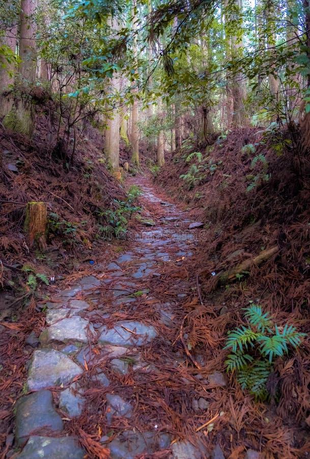 Chemin de Kumano Kodo photo libre de droits