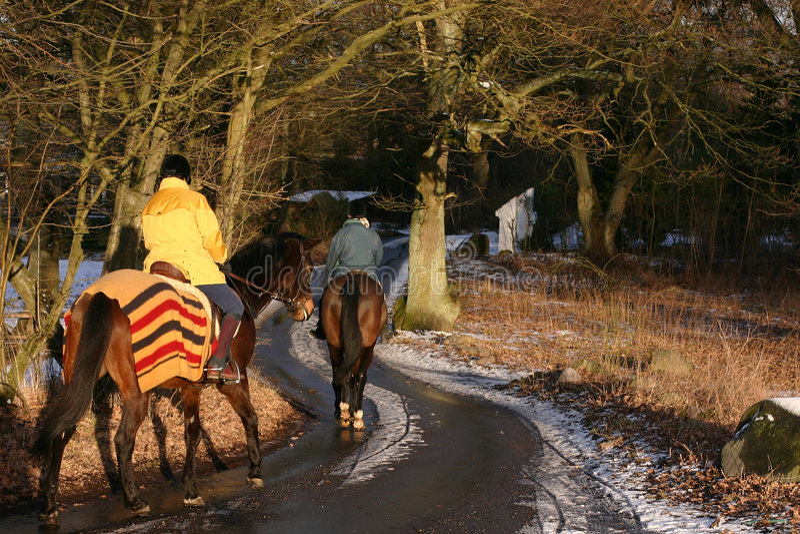 Chemin de l'hiver image libre de droits