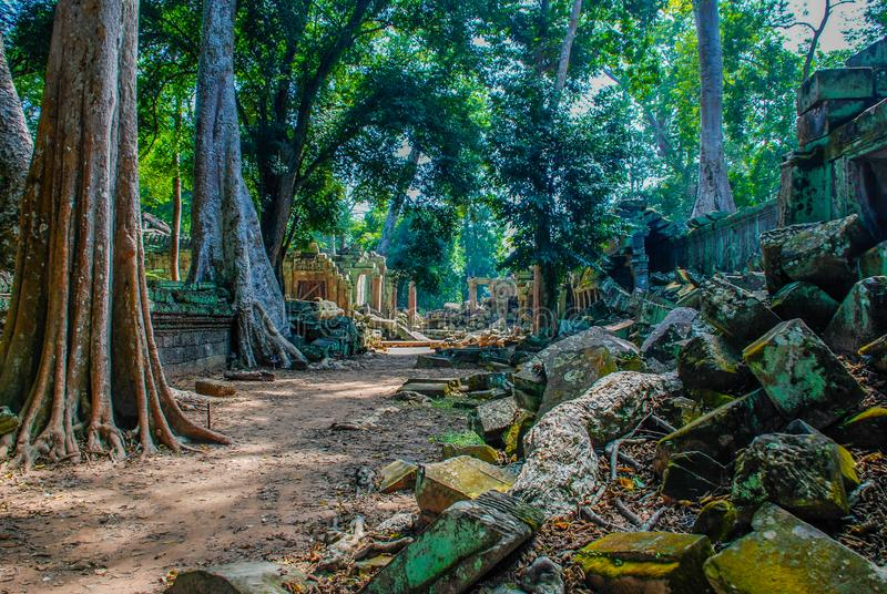 Chemin de marche à travers les ruines antiques d'Angkor Vat photo libre de droits