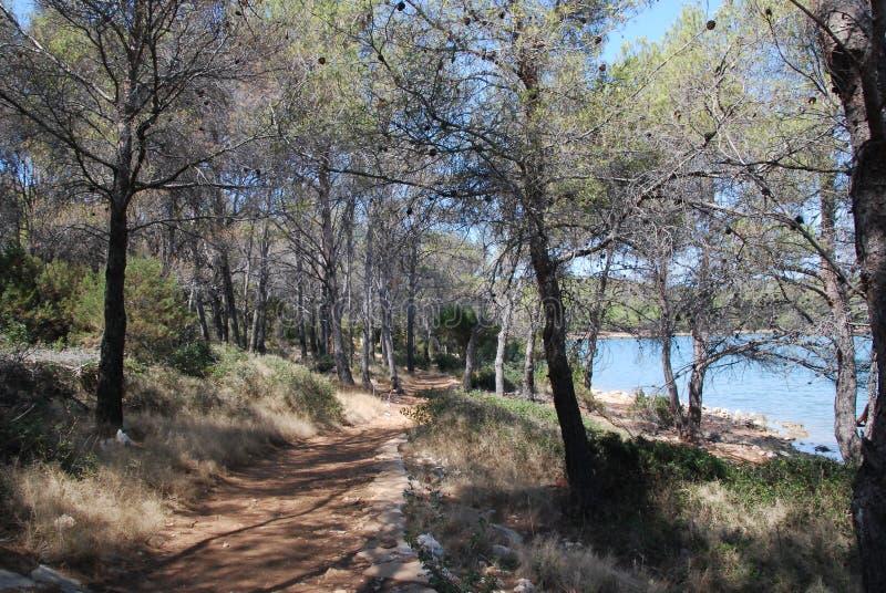 """Chemin de marche le long de Salt Lake """"MIR """"sur l'île de Dugi Otok, Croatie image stock"""