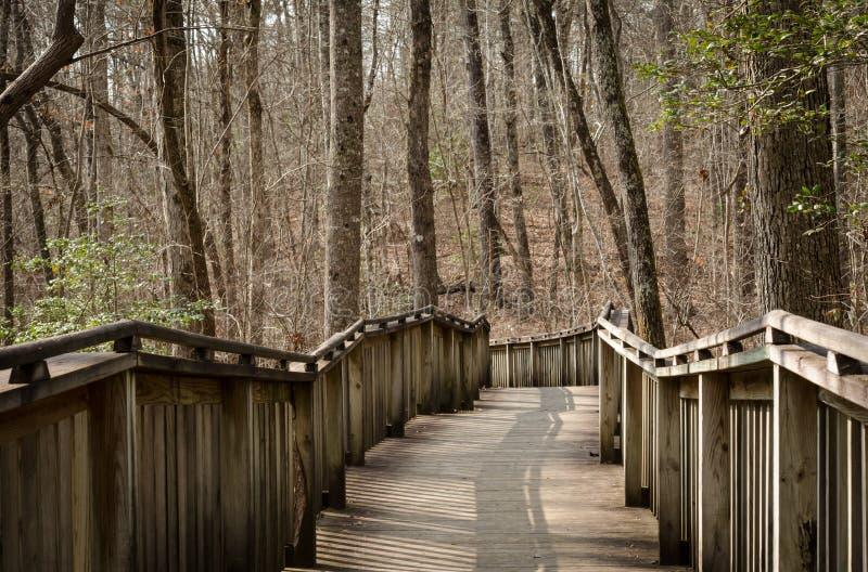 Chemin de marche sur la promenade en bois par des bois photo libre de droits