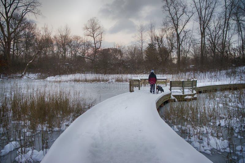 Chemin de Milou un jour d'hiver, parc provincial d'Ontario, Canada images libres de droits
