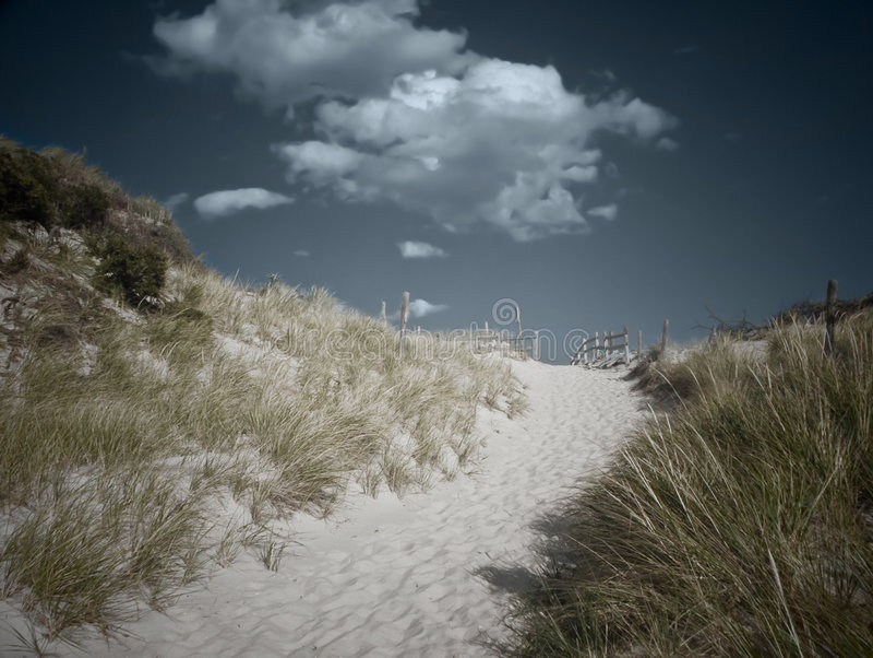 Chemin de plage photographie stock