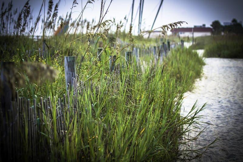 Chemin de plage photographie stock libre de droits