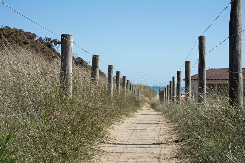 Chemin de plage au bord de la mer image libre de droits