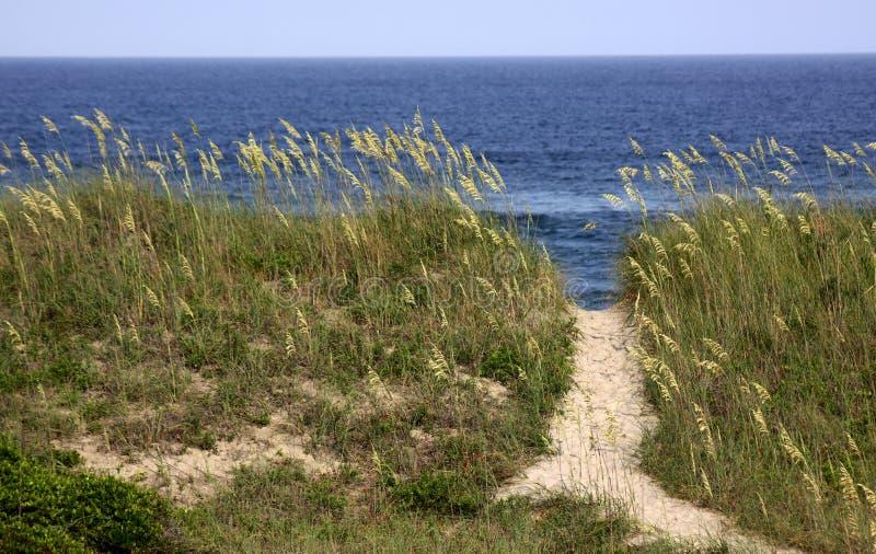 Chemin de plage de la Caroline du Nord images stock