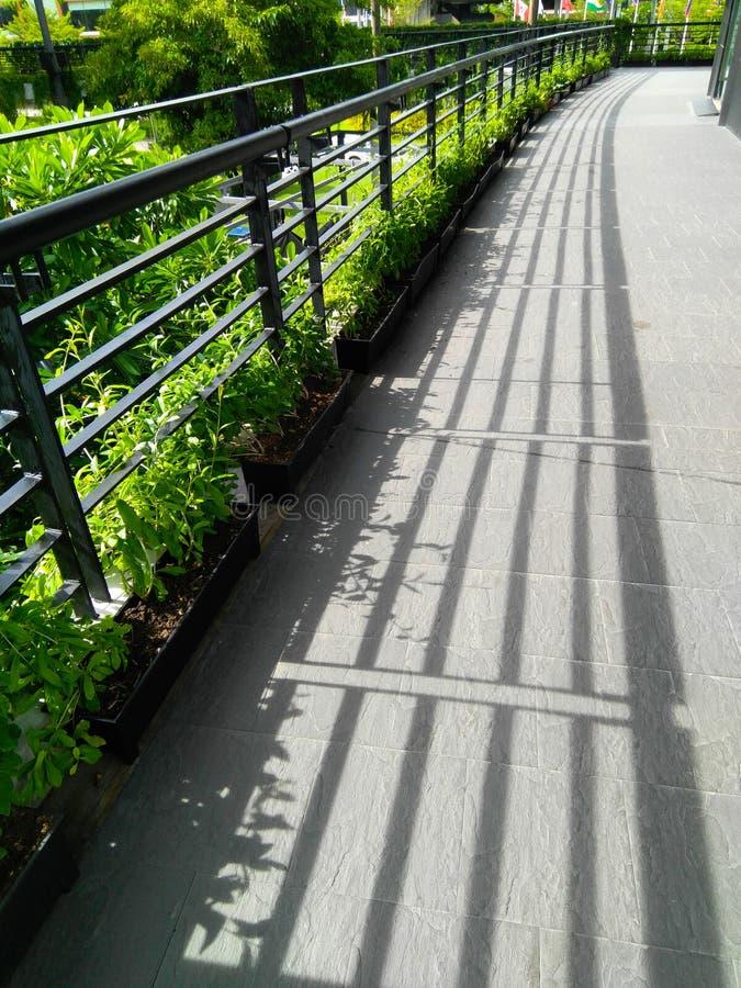 Chemin de promenade de balcon de lumière et d'ombre et de plante verte photographie stock