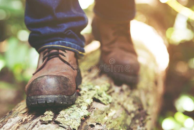 Chemin de sentier de randonnée dans l'action sur montagnes ou forêt avec augmenter des chaussures images stock