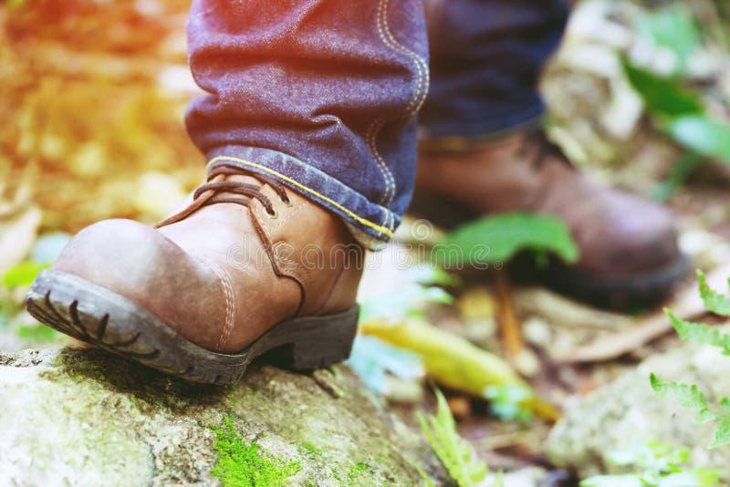 Chemin de sentier de randonnée dans l'action sur montagnes ou forêt avec augmenter des chaussures photographie stock libre de droits