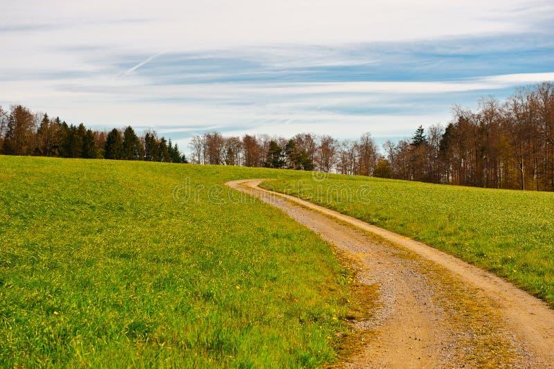 Chemin De Terre Photos libres de droits