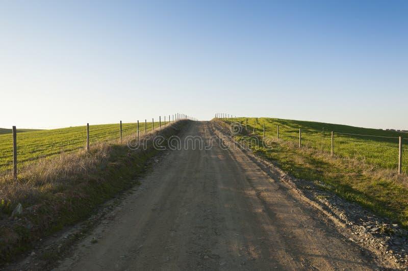 Chemin de terre photo libre de droits