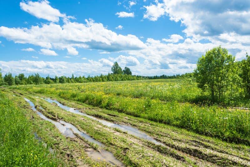 Chemin de terre après pluie photographie stock libre de droits