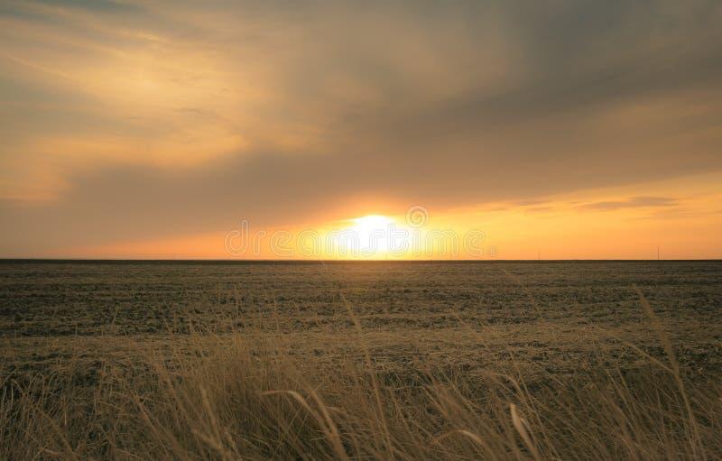 Chemin de terre dans le domaine à l'horizon images stock