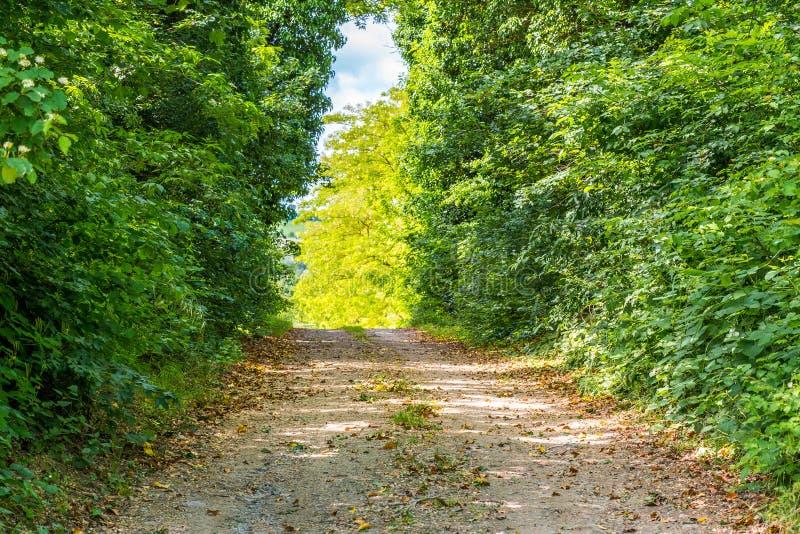 Chemin de terre de campagne et barrière en bois photos stock