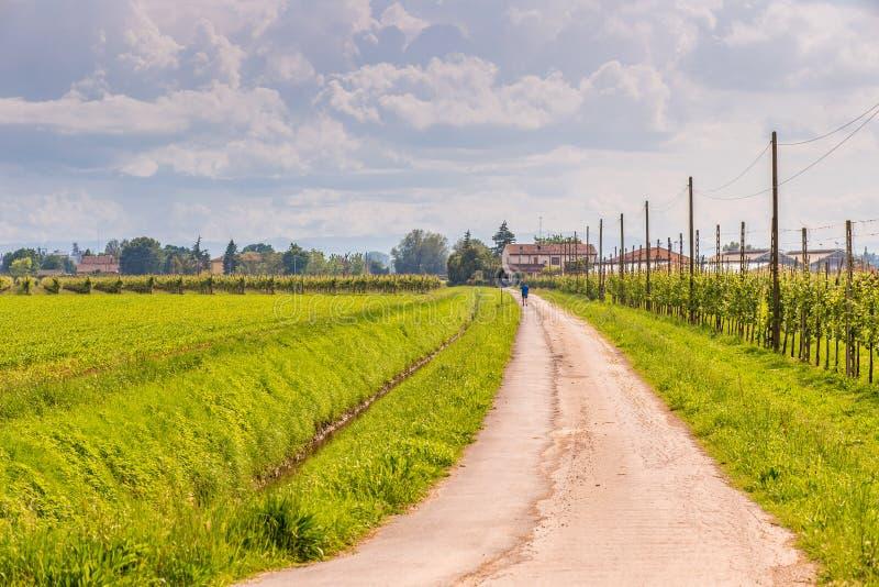 Chemin de terre de campagne et barrière en bois photographie stock libre de droits