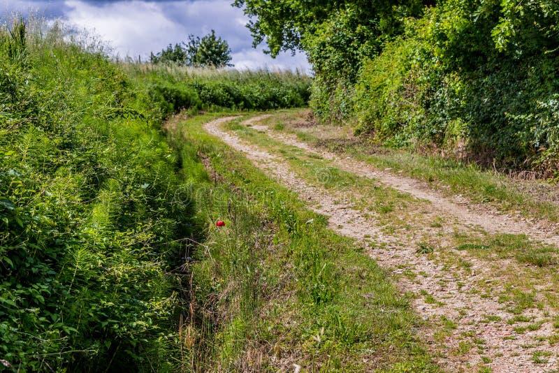 Chemin de terre de campagne et barrière en bois photo libre de droits