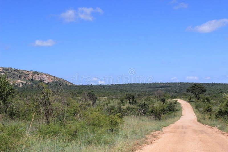 Chemin de terre par le parc national de Kruger, Afrique du Sud, nature africaine photo stock