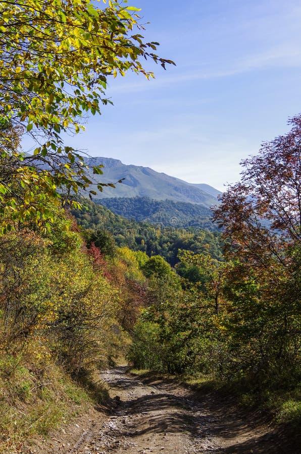 Chemin de terre par le parc national de Dilijan photographie stock libre de droits
