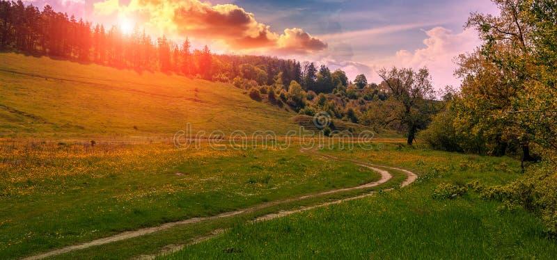 Chemin de terre rural au coucher du soleil Champ d'herbe verte et paysage de montagne photographie stock libre de droits