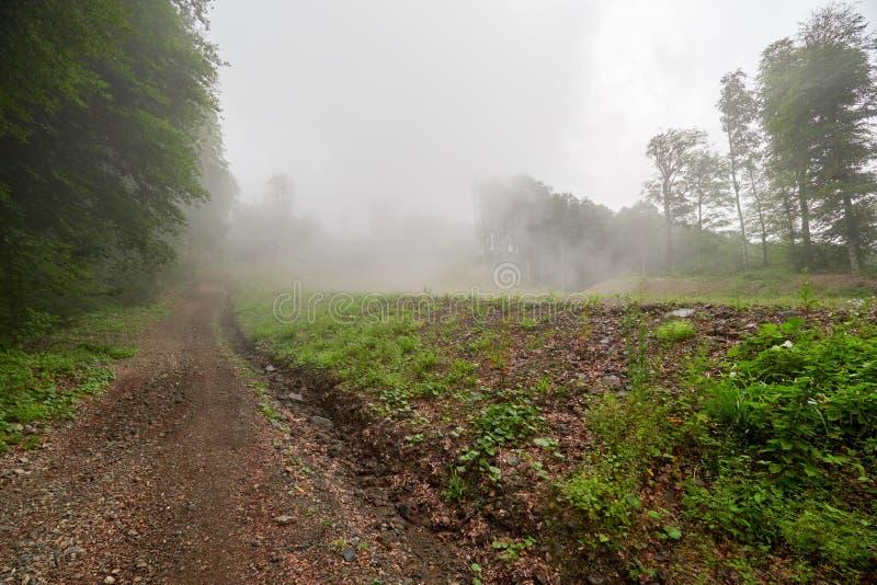 Chemin de terre sur une pente de montagne en brouillard dense photographie stock