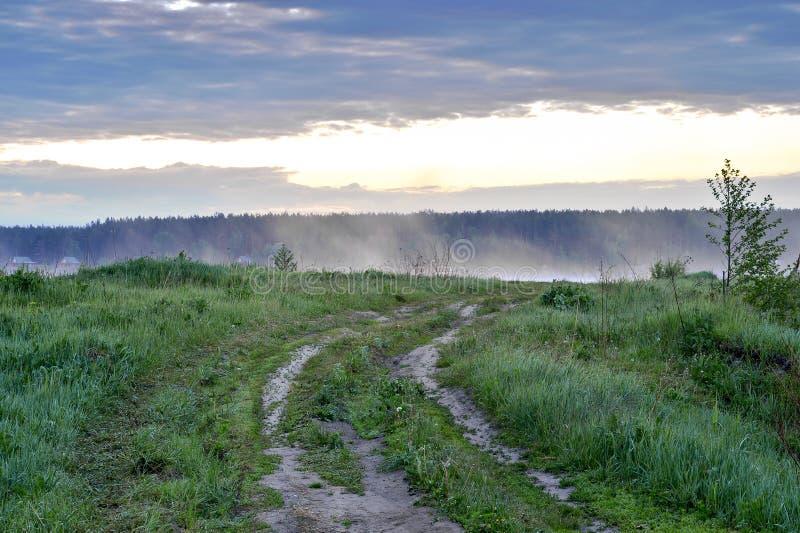 Chemin de terre vers le lac en brume d'aube photographie stock