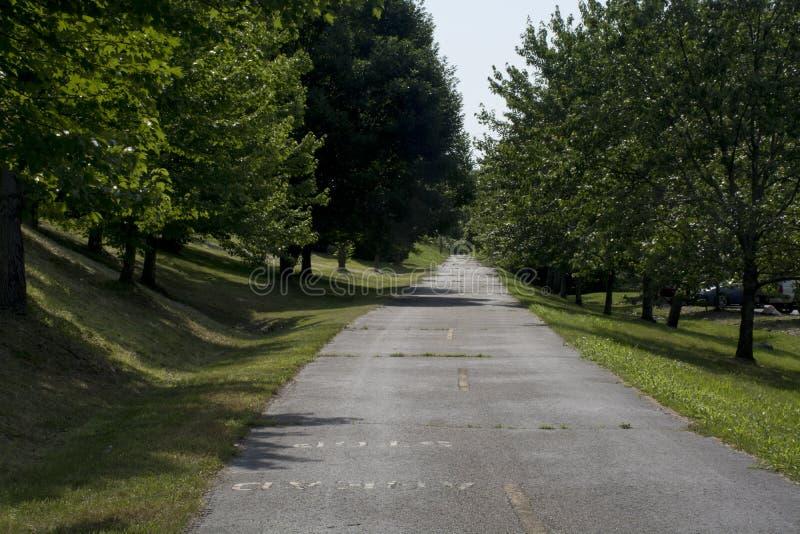 Chemin de vélo rayé par arbre photos libres de droits